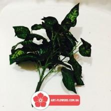 Куст зелени