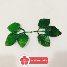 Лист для розы