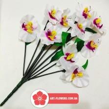 Букет орхидея 9 голов